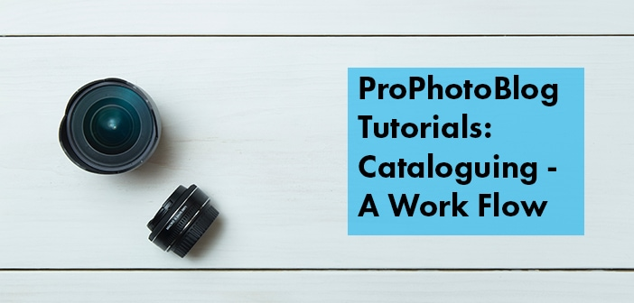 Vistek Tutorials - Cataloguing Cover