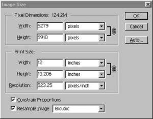 Photoshop Image Size Control Panel