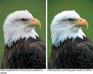 RGB and CMYK Comparison Images
