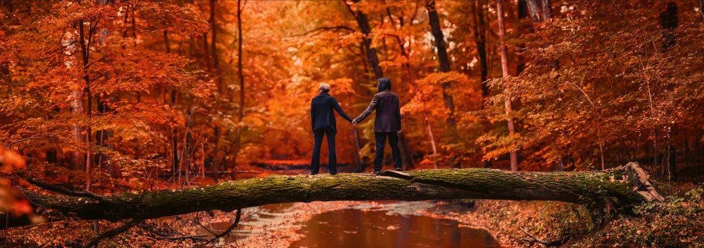 Fall Portrait on a fallen tree