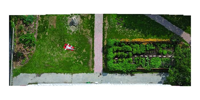 Aerial View of Garden by Jonathan Groeneweg