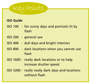 iso guide key points - Mark Cleghorn