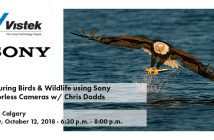 Sony Chris Dodds Calgary Event Blog