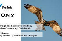 Sony Chris Dodds Edmonton Event Blog