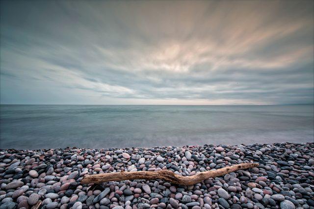Loner © Doug Gibbons